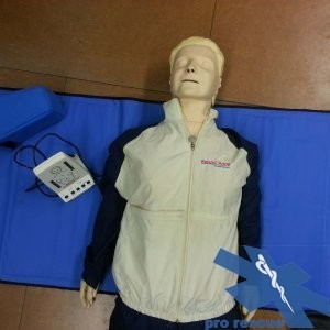 Erste Hilfe (BLS) Reanimationspuppe Erwachsene